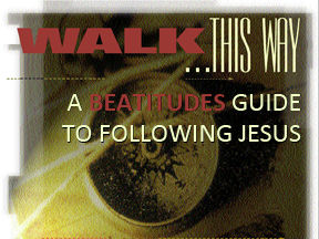 website Walk this Way